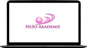 Несо Академия в цифрах